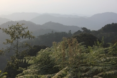 Ruanda_04